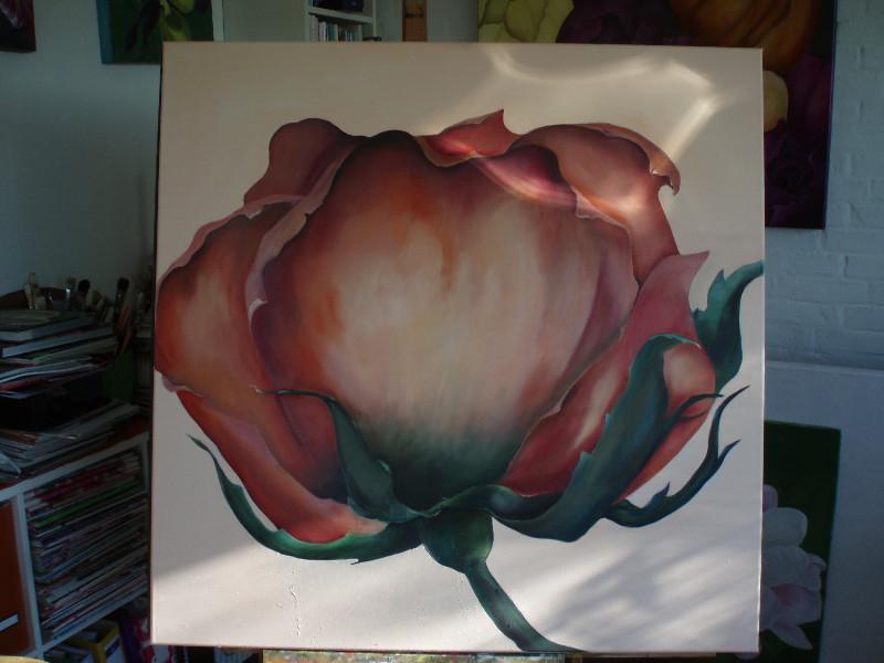 rose-026